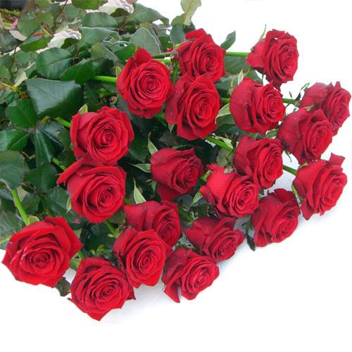 Mazzo di rose a gambo lungo fioreria del corso fiori for Disegni e prezzi del mazzo
